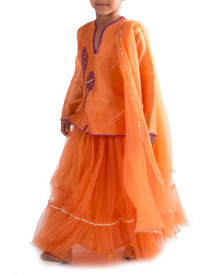 Glorious Sunset tulle lehenga - BY ELORA