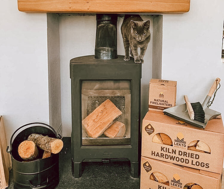 A cat standing on top of a log burner that's next to a box of Lekto Kiln-dried hardwood logs