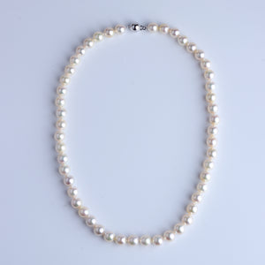 Queen Color Japan Akoya Pearl Necklace 8-8.5mm