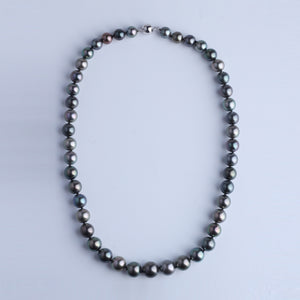 Tahiti Pearl Necklace 8.0-10.9mm