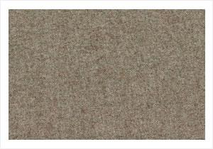 Earth Hessian
