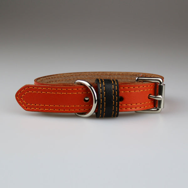 dog collars made in Britain in orange with brown stay & orange double stitching by Sam Brown London