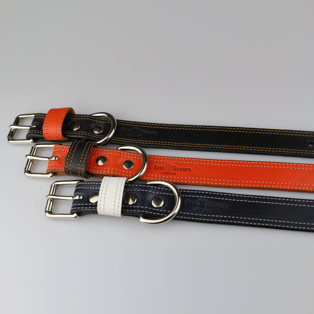 colourful & striking dog collars made in Britain in orange black and blue solid leather by Sam Brown London