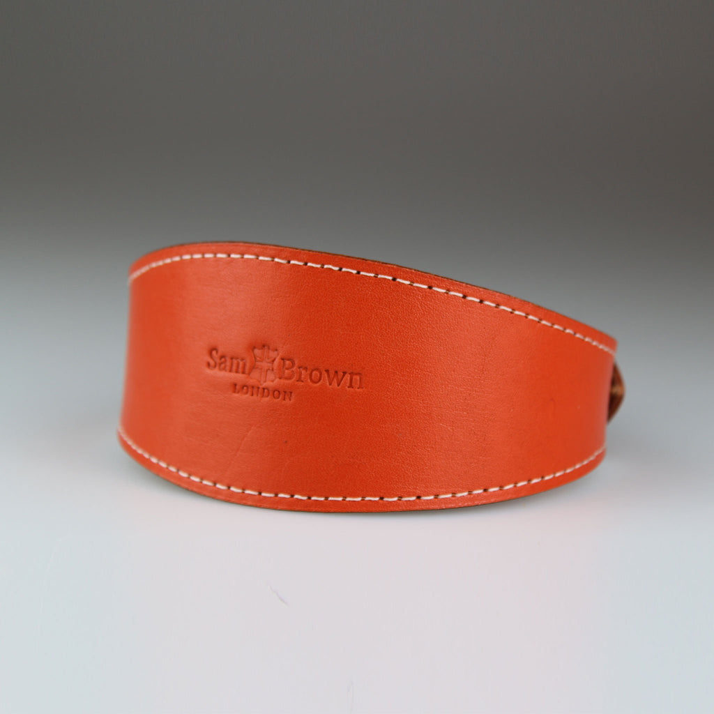 Orange whippet greyhound leather collar made in Britain Sam Brown London