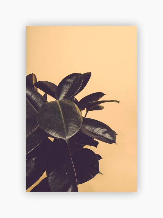 Leaves Poster