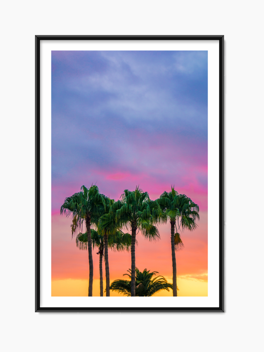 Palm Trees In Sunset Poster