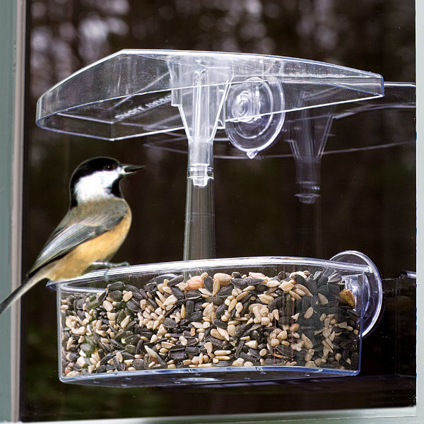 Droll Yankees® OWF Observer Window Bird Feeder, UV-Stabilized Polycarbonate