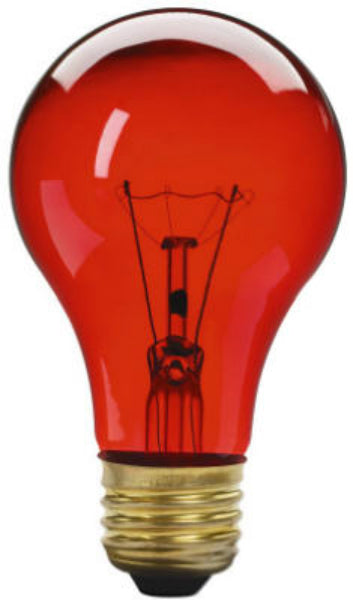 Westpointe 70804 Party Light 25A19/TR Bulb, 25W, 120V, Transparent Red