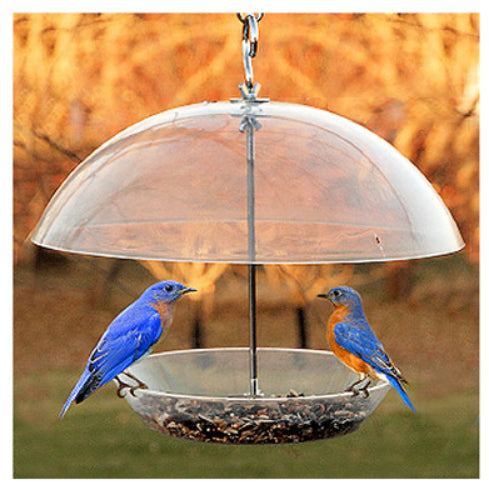 Audubon™ NABBFDR Dome Top Seed & Bluebird Bird Feeder, 11.75""
