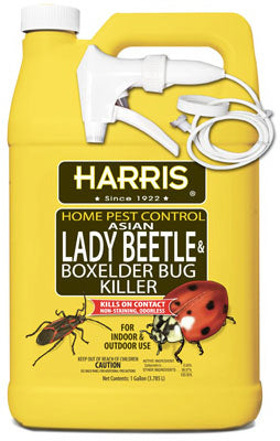 Harris® HBXA-128 Asian Lady Beetle & Box Elder Bug Killer, 128 Oz