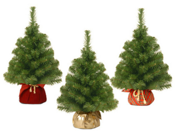National Tree NBA7-20G/B Noble Artificial Spruce Tree, 2'