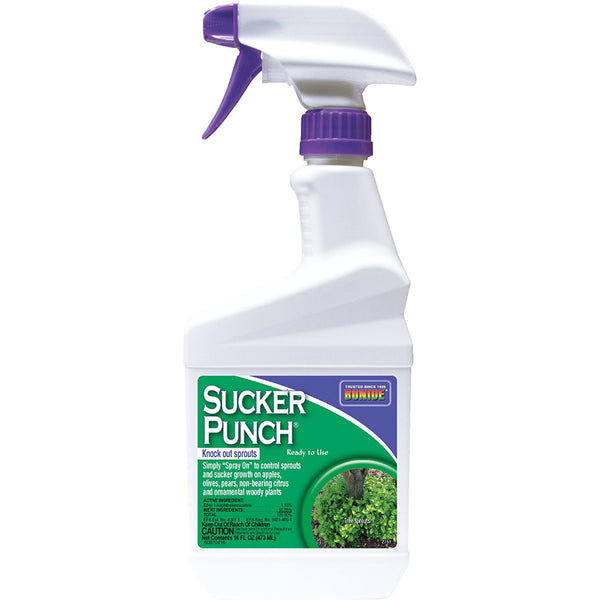 Bonide® 2761 Sucker Punch Knock Out Sprouts, Ready To Use, 1 Pint