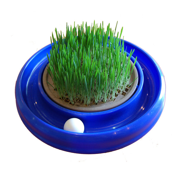 Bergan® 88341 Turbo Cat Grass® Cat Toy