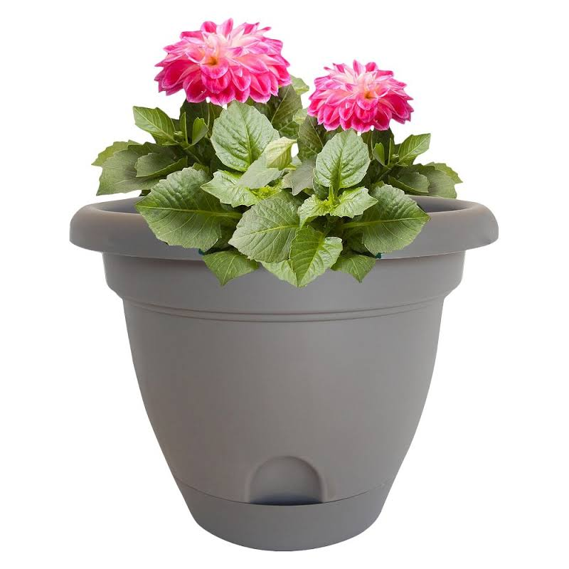 Bloem Lp1260 Lucca Self Watering Plastic Planter Peppercorn Dark