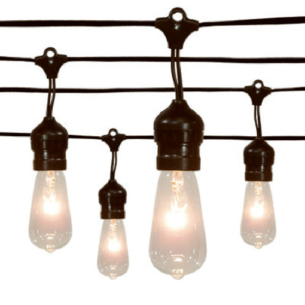 Sylvania V42986-88 Christmas Edison Drop 20-Light Set with Black Wire, Clear