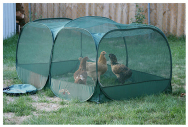 Peck and Play 5CHPP Portable Chicken Enclosure