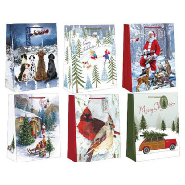 Expressive Design CGBAJ2-27 Jr. Cub Gift Bag, 6 Assorted Designs
