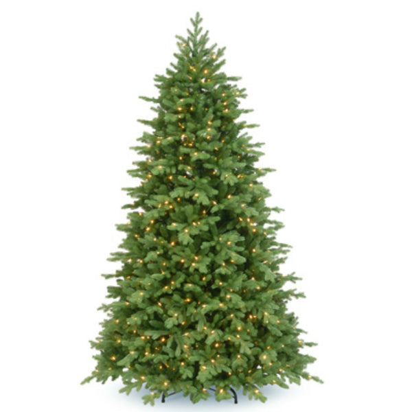 National PEPO2-308P-75 Princeton Fraser Fir Hinged Tree, 800 Clear Lights, 7.5'