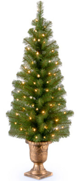 National Tree MC7-344-40 Montclair Spruce Entrance Artificial Tree, 70 Light, 4'