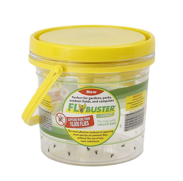 FlyBuster 23526 Compact Fly Trap with Natural Non-Toxic Bait