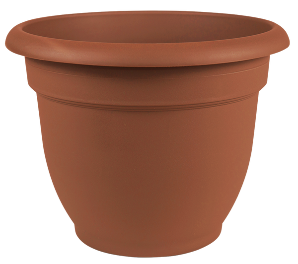 Bloem 20-56112 Ariana Plastic Planter with Self Watering Disk, Terra Cotta, 12""