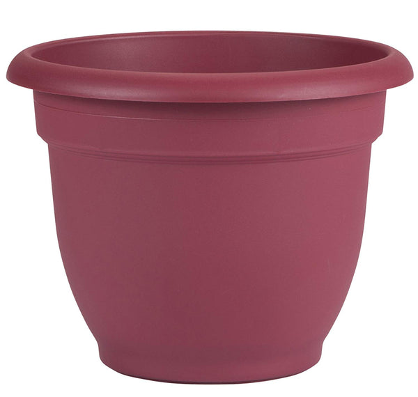 Bloem AP0812 Ariana Plastic Planter with Self Watering Disk, Union Red, 8""