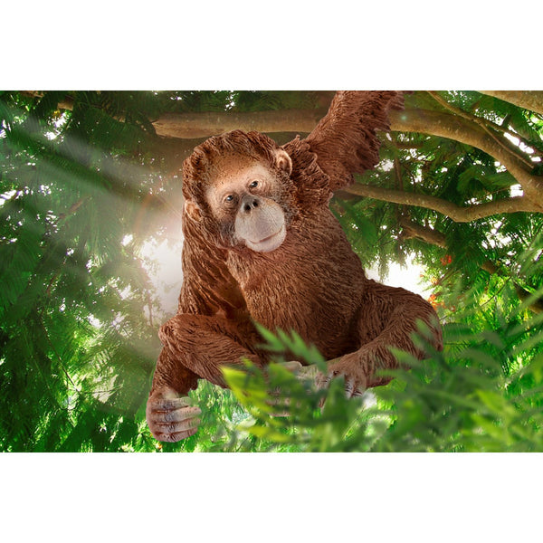Schleich 14775 Figurine Female Orangutan Toy