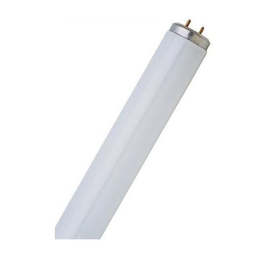 Feit Electric F40DX Daylight Linear Fluorescent Bulbs, 40 Watts