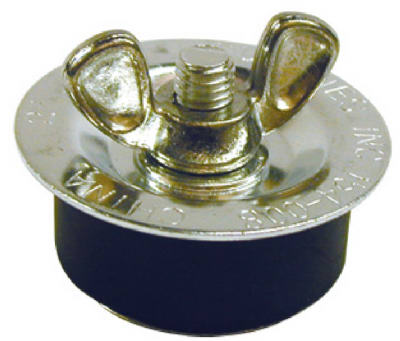 Galvanized Test Plug 2""