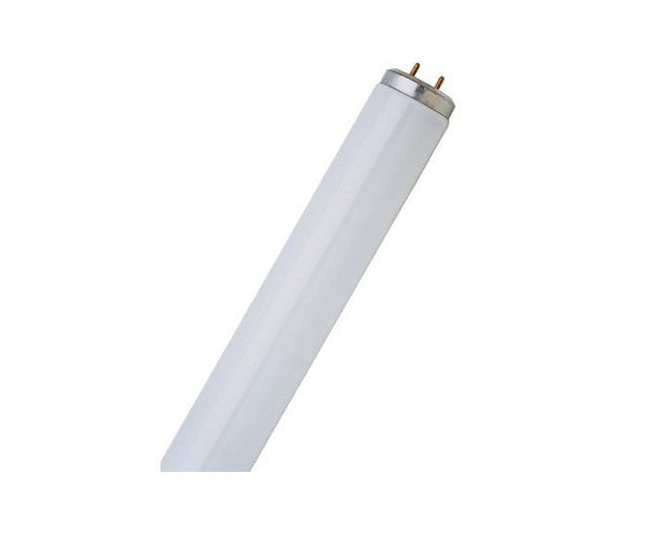 Feit Electric F30T12/CW/RS Linear Fluorescent Tube Light Bulb, 30 Watts