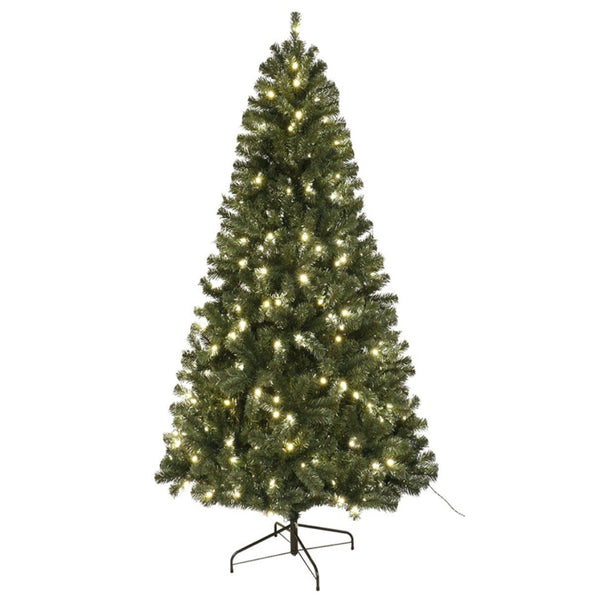 Santas Forest 61970 Noble Fir Sheared Prelit Christmas Tree, 7 Ft
