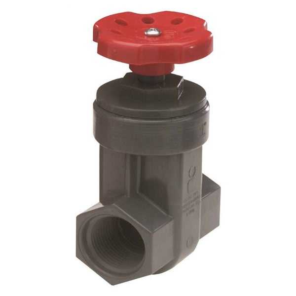 Nds GVG-1000-S ProGuard Gate Valve, 1""