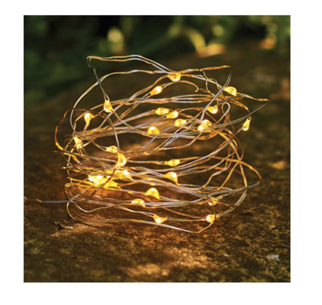 Globe Electric 67854 Lulea Collection LED String Light Set, 17 feet