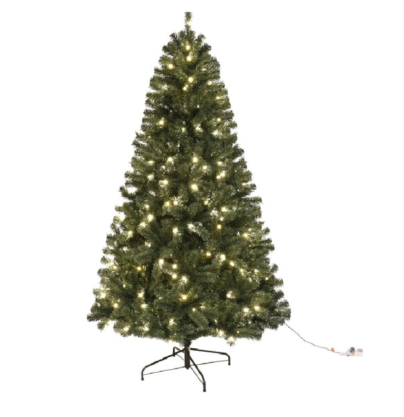 Santas Forest 61912 Fir Noble Sheared Prelit Christmas Tree, 12 Feet