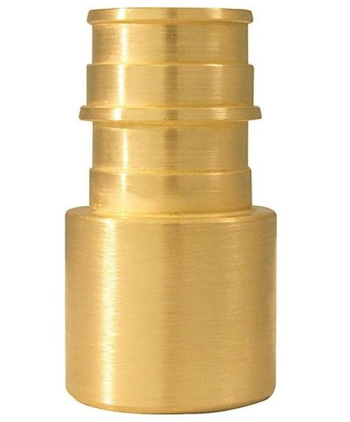 Apollo EPXFS345PK Female Pipe Adapter, Brass, 3/4