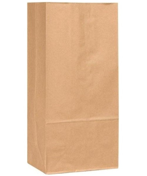 R3 30905 Extra Heavy Duty Paper Bag, Plain, Brown, 250/Bundle