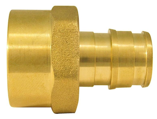 Apollo EPXFA1210PK Pipe Adapter, Brass, 1/2""
