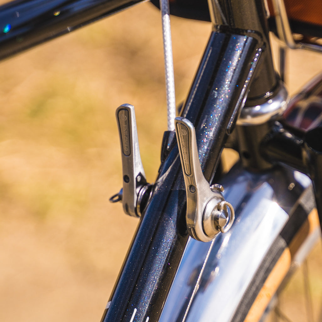Dia-Compe 11 speed Downtube Shifters on Velo Orange Polyvalent 650b Frame