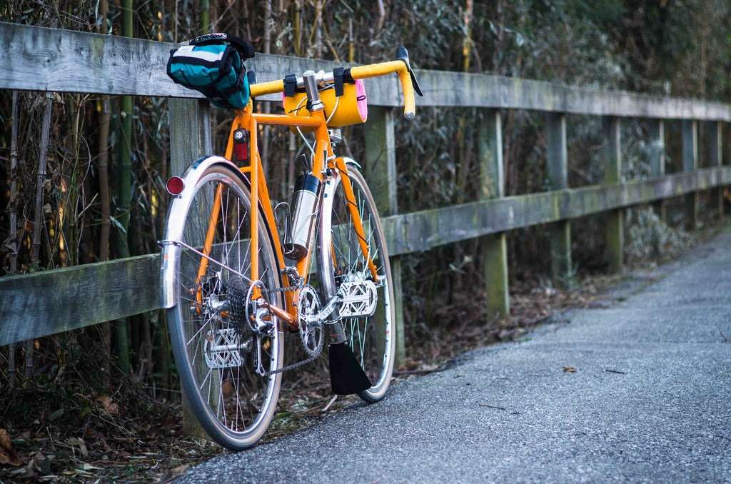 Velo Orange Pass Hunter Disc Winter Road Bike Build Idea