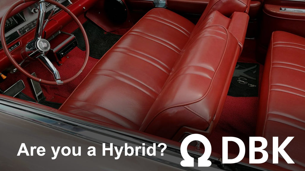 Are You a Hybrid