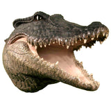 3D Hanging Wall Mounted Crocodile or Alligator Skull Head Mount