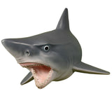 Hanging Wall Mounted Great White Shark w/ Teeth Display