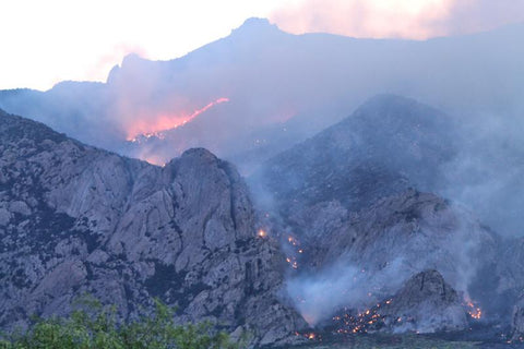 FIRE IN THE DRAGOON MOUNTAINS