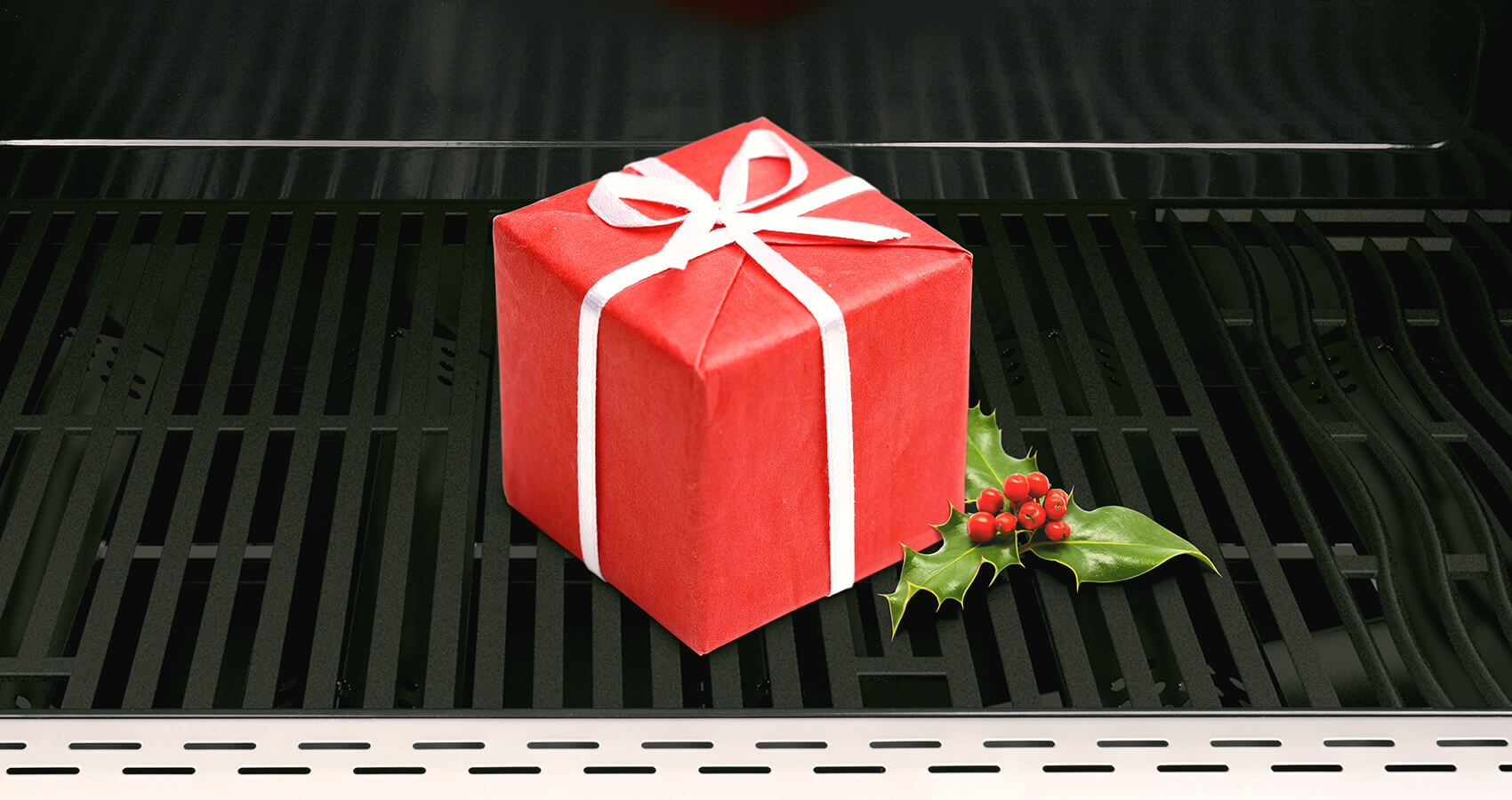 christmas present inside the nexgrill grill