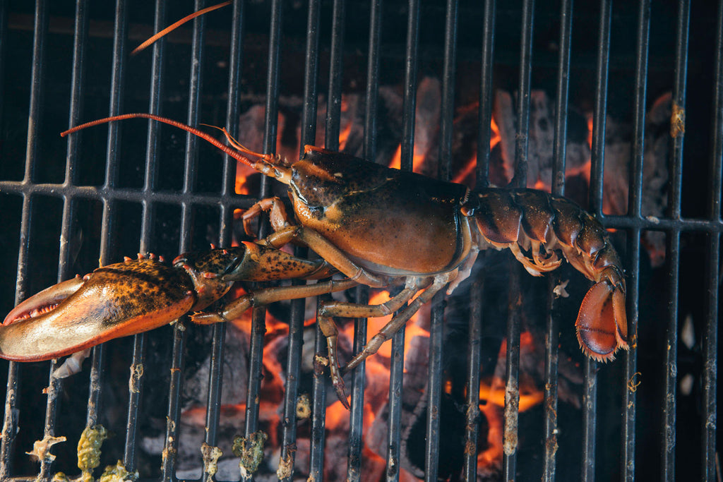 grilling lobster over direct heat