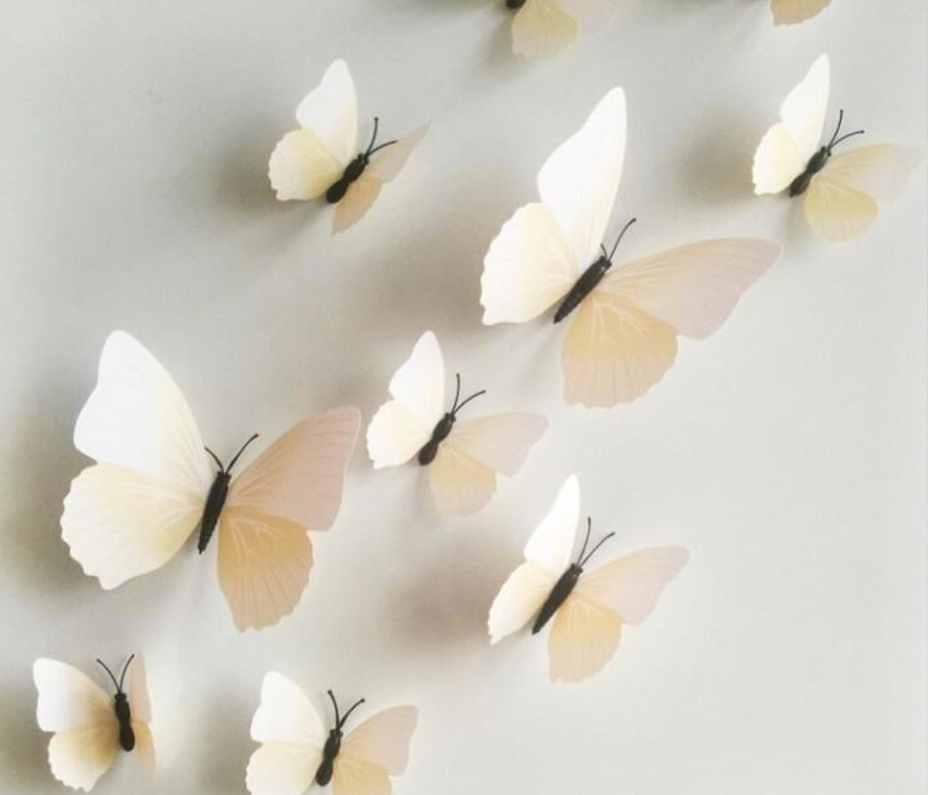 3D PVC Butterfly Wall Decals