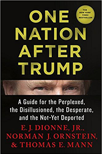 One Nation After Trump: A Guide for the Perplexed, the Disillusioned, the Desperate, and the Not-Yet Deported