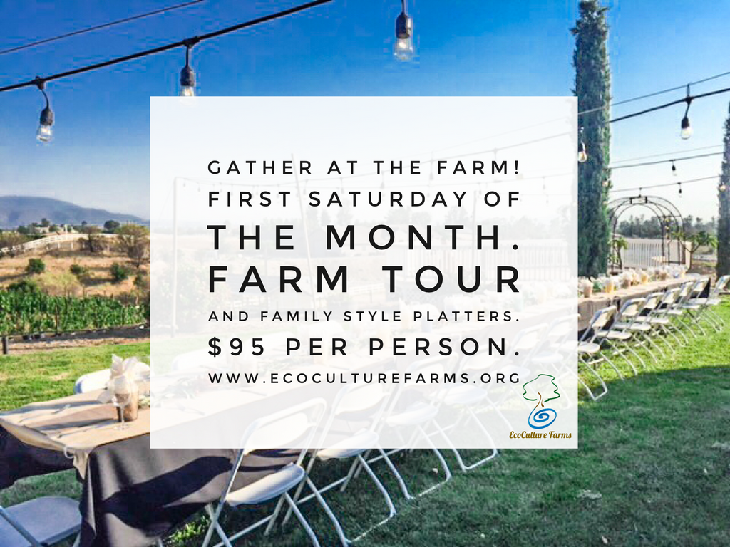 Gather At The Farm