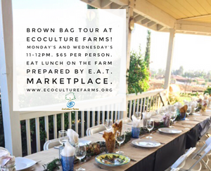 Brown Bag Tours