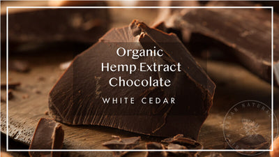 Chocolate Reinvented